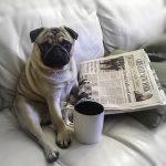 Как правильно оформить статью для блога
