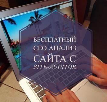бесплатный сео анализ сайт онлайн
