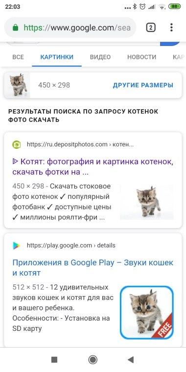 результат поиска по картинке в Google